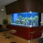 marine-aquarium-page-3